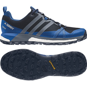 adidas TERREX Agravic GTX Shoes Men collegiate navy/raw steel/blue beauty